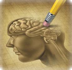 dibujo cerebro