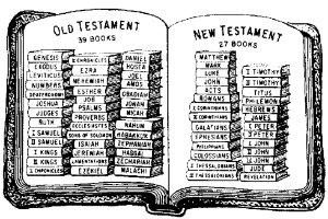 biblia 300